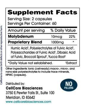 BioToxin Binder (120 caps)